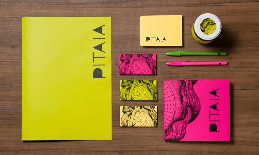 projeto_pitaia_branding_total